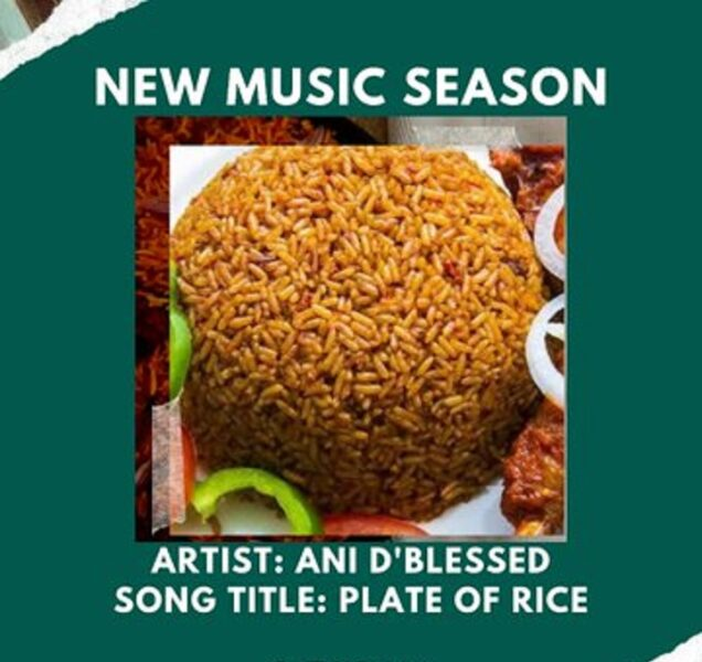 Plate Of Rice – Ani D'blessed